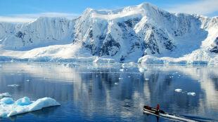 """""""Antarktyda nie jest martwym kontynentem"""". Pod jej lodami odkryto życie"""