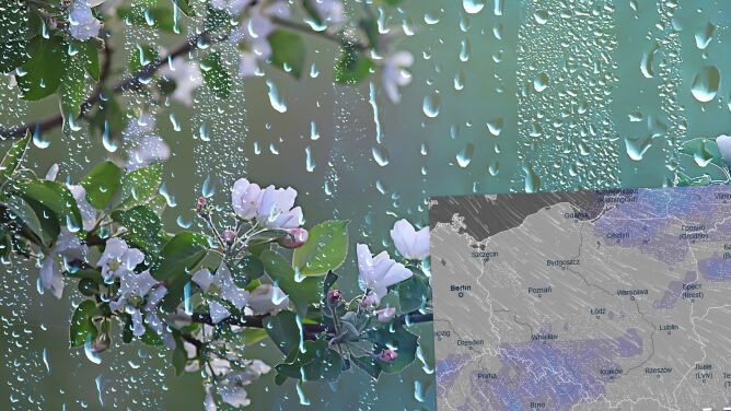 Pogoda na 5 dni: <br />słońce, deszcz, porywisty wiatr